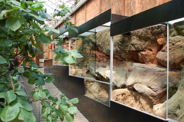 Nordisk biotopanläggning för ormar och grodor till Korkeasaari / Helsinki zoo