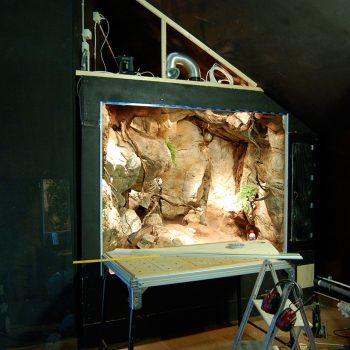 Biotopmiljö från Monserat till Nordens ark